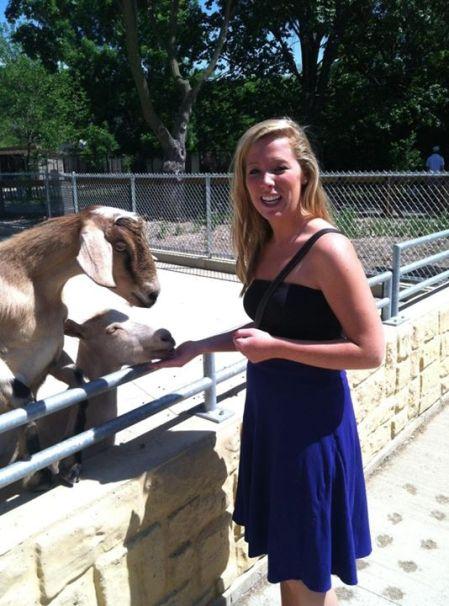 Wisconsin Goat