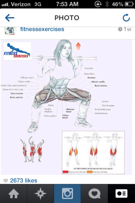 power squat